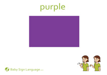 Purple Flash Card Thumbnail