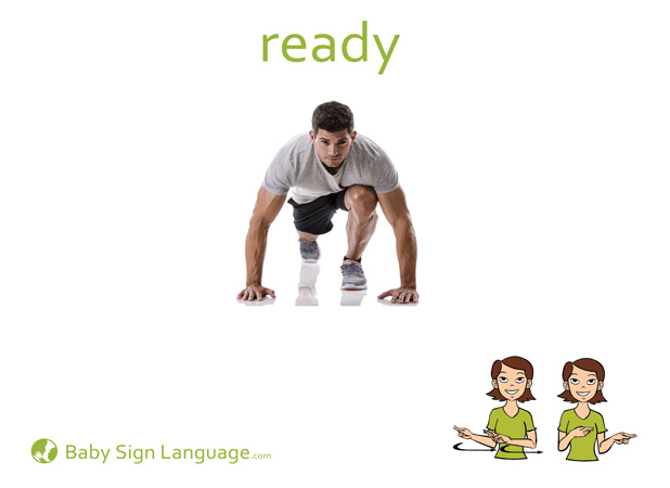 Ready Baby Sign Language Flash card