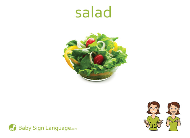 Salad Baby Sign Language Flash card