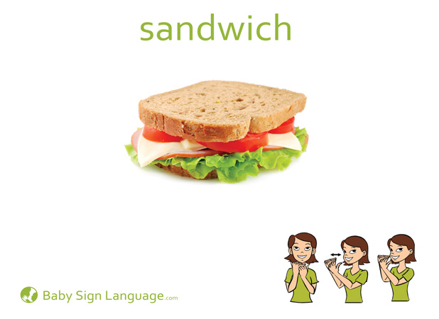 Sandwich Baby Sign Language Flash card