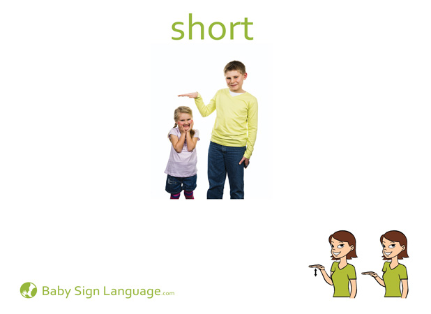 Short Baby Sign Language Flash card