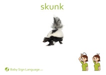 Skunk Flash Card Thumbnail