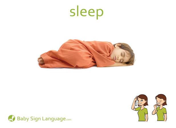 Sleep Baby Sign Language Flash card