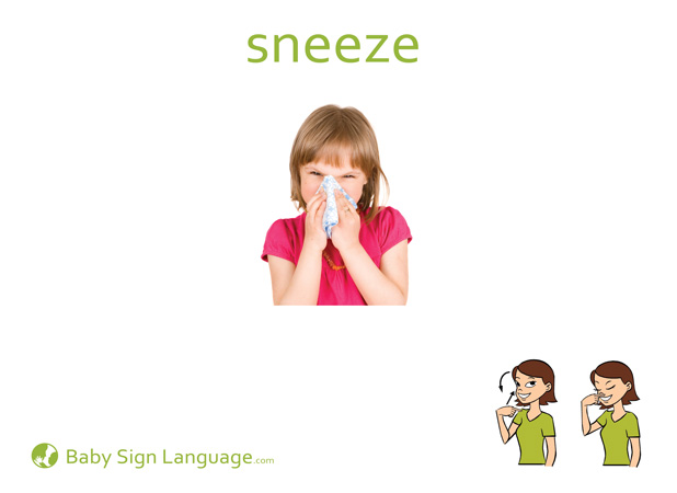Sneeze Baby Sign Language Flash card