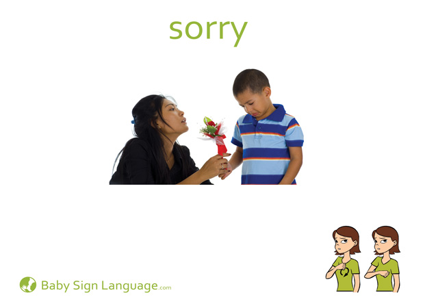 Sorry Baby Sign Language Flash card
