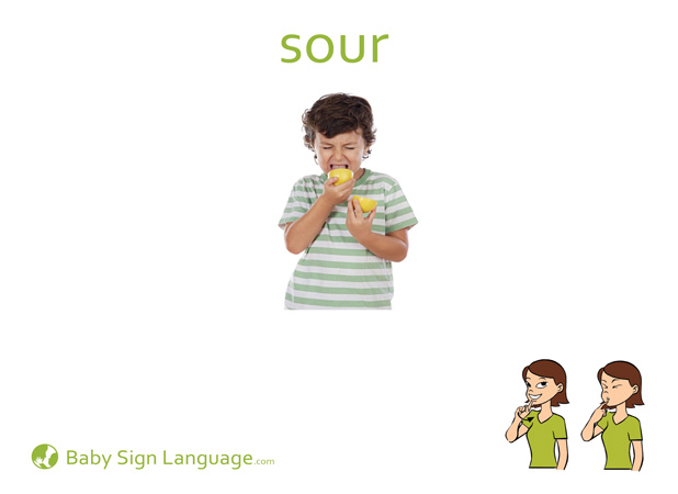 Sour Baby Sign Language Flash card