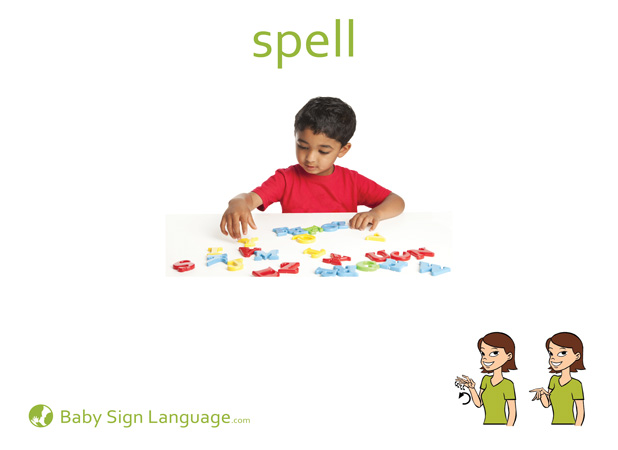 Spell Baby Sign Language Flash card