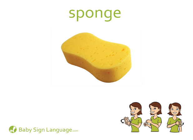 Sponge Baby Sign Language Flash card