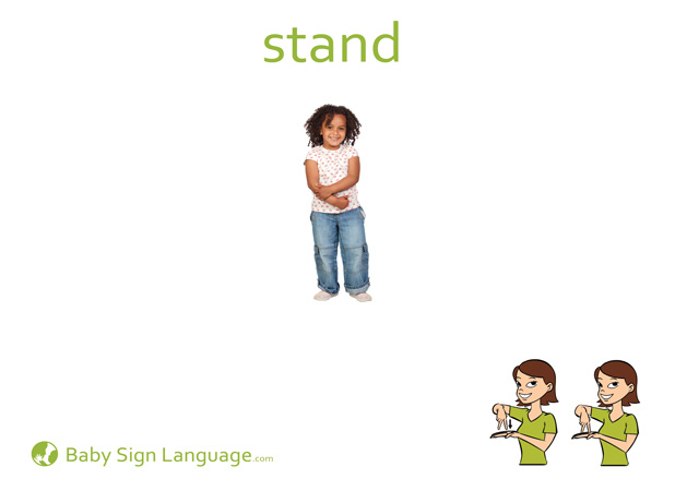 Stand Baby Sign Language Flash card