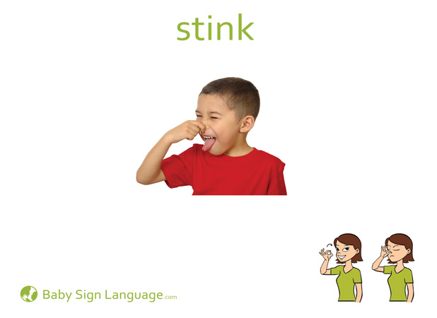 Stink Baby Sign Language Flash card