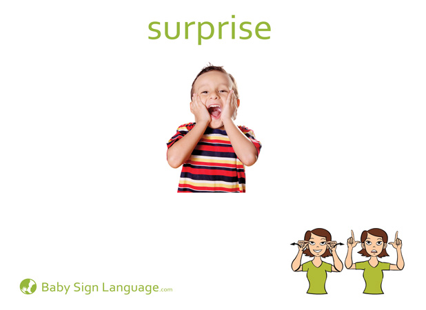 Surprise Baby Sign Language Flash card