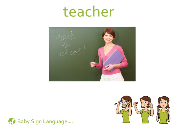 Teacher Baby Sign Language Flash card