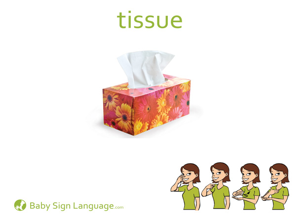 Tissue Baby Sign Language Flash card