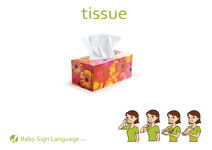 Tissue Flash Card Thumbnail