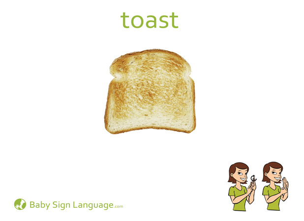 Toast Baby Sign Language Flash card