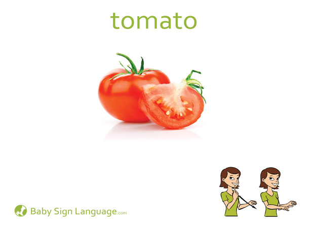Tomato Baby Sign Language Flash card