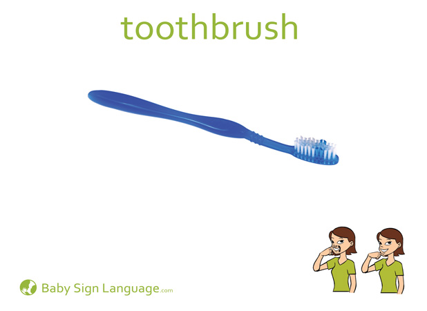 Toothbrush Baby Sign Language Flash card