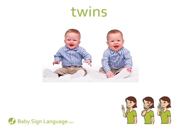 Twins Baby Sign Language Flash card
