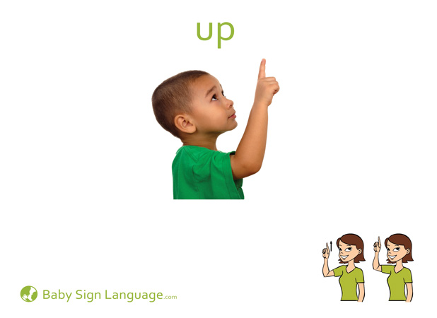 Up Baby Sign Language Flash card