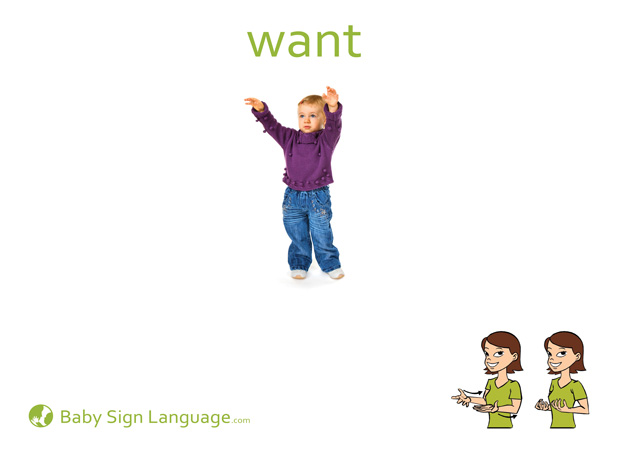 Want Baby Sign Language Flash card