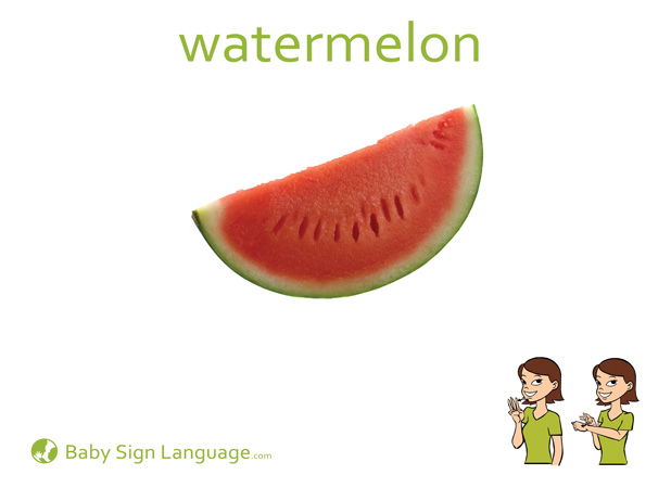 Watermelon Baby Sign Language Flash card