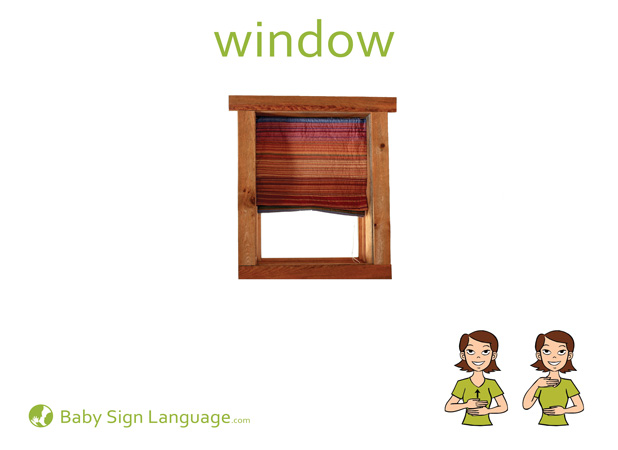 Window Baby Sign Language Flash card