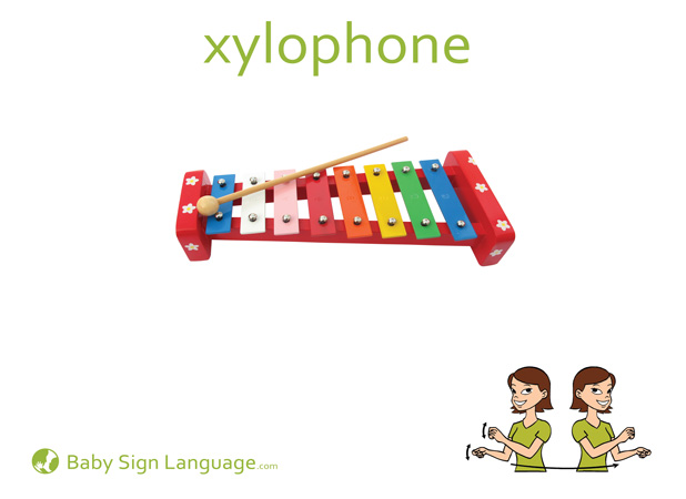 Xylophone Baby Sign Language Flash card