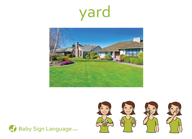 Yard Baby Sign Language Flash card