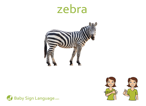 photo regarding Asl Animal Signs Printable named Zebra