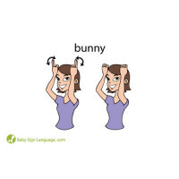 Baby Sign language Flash Cards Sample Back