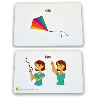 kite_both2