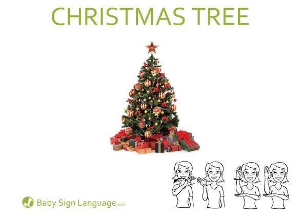 christmas tree baby sign language flash card - How To Sign A Christmas Card