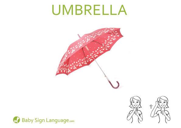 Umbrella Baby Sign Language Flash card